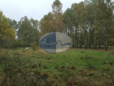 Działka na sprzedaż o pow. 3000 m2 - Lipinki Łużyckie - 109 000,00 PLN