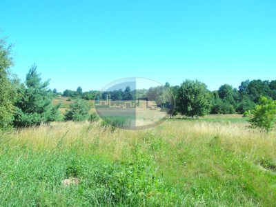 Działka na sprzedaż o pow. 2030 m2 - Zabór - 305 500,00 PLN